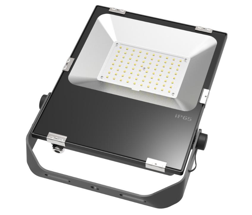 Светодиодный светильник DMS серия Flood Light 100Вт на сайте Белторгхолод